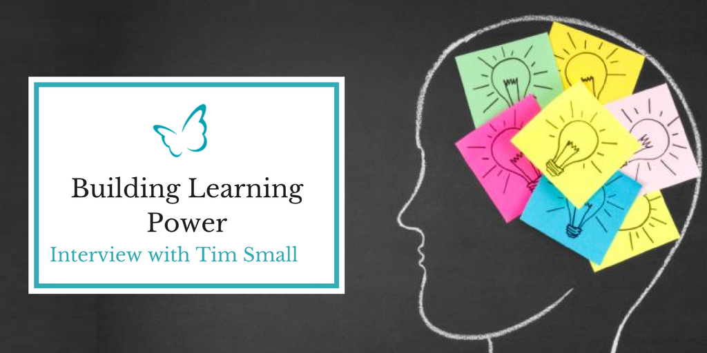 Building Learning Power – Expert interview
